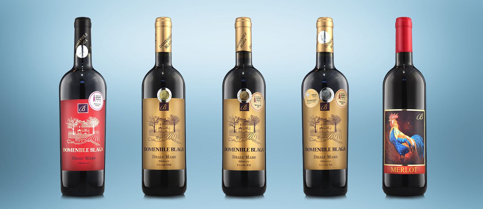 Merlot Vin Rosu Domeniile Blaga Cumpara Vin Online Vin Rosu