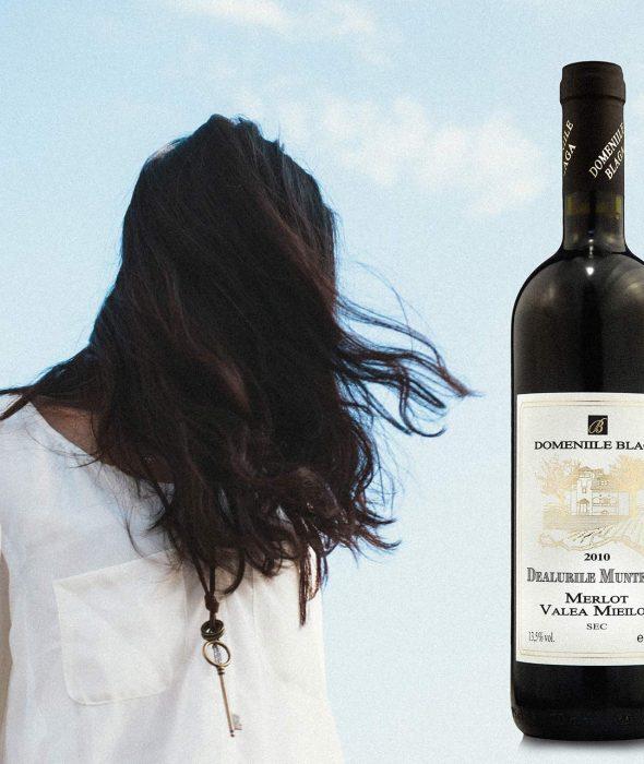Domeniile Blaga Merlot Valea Mieilor 2010 cumpara vin online