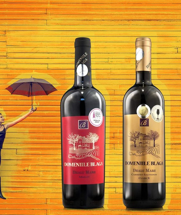 Domeniile Blaga Merlot Dealurile Munteniei 2010 Cumpara vin online