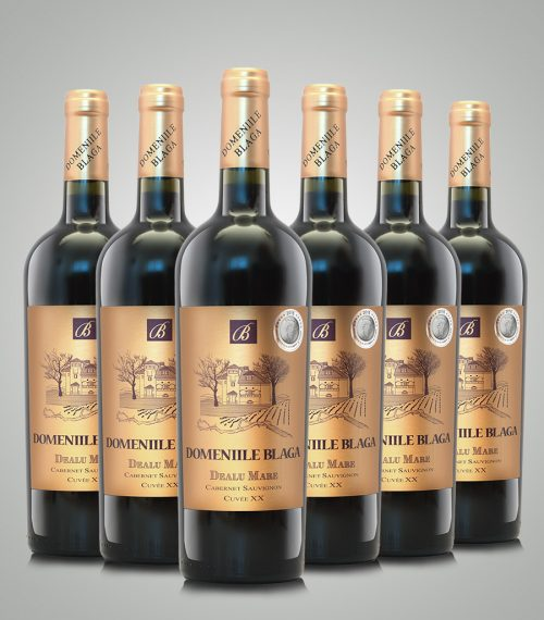 Domeniile Blaga Cabernet Sauvignon Cuvee XX 2011 Sec Vin de calitate superioara Cumpara vin online Dealu Mare