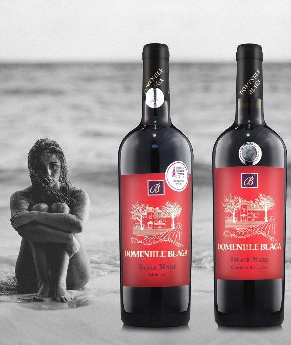 Domeniile Blaga Merlot Dealu Mare 2013 Cumara vin online vin rosu