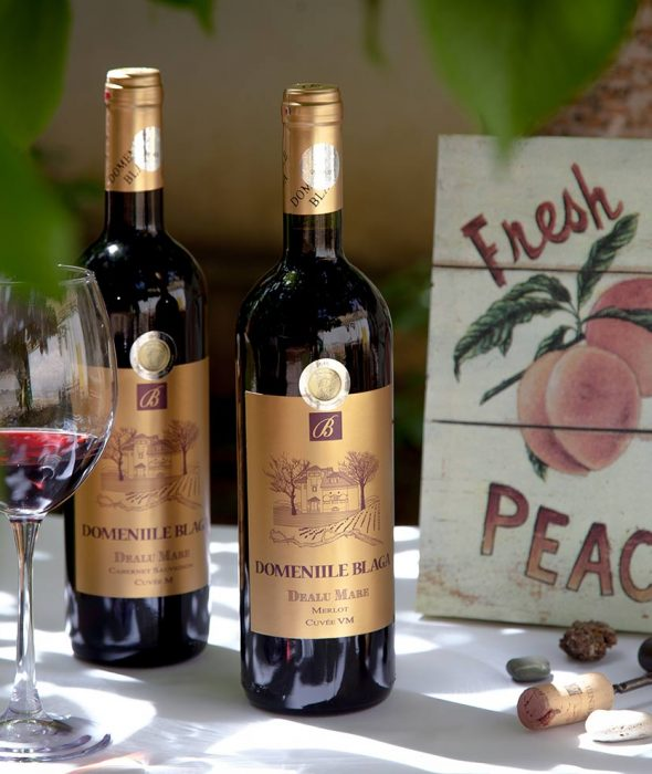 Domeniile Blaga Cabernet Sauvignon Cuvee M 2011 Sec Vin de calitate superioara Cumpara vin online Dealu Mare Merlot Cuvee VM
